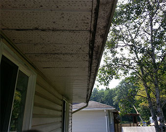 Pressure Washing Barrie How To Clean Siding